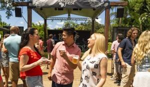 Segunda edição do Bier Fest do Busch Gardens começa na próxima semana