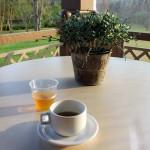 É possível tomar um chá de graça durante a tarde e também comprar os saches para levar para casa