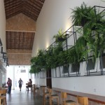 Galeria do Jardins de Jurema