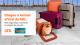 Gol lança caixa de transporte exclusiva para animais de estimação