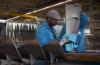KLM utiliza garrafas pet recicladas para fazer a manutenção das aeronaves