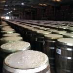 Os molhos levam quase três anos para fermentar e ficarem prontos