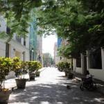 Os convidados caminharam por todo o Centro Histórico de Havana