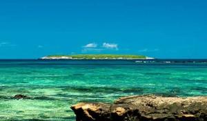 Parque Nacional de Abrolhos está livre de óleo, garante MTur
