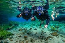 Ecoturismo desponta na procura por viagens em 2021, diz ViajaNet
