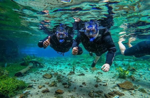 O mergulho no rio é uma das experiências mais procuradas de Bonito