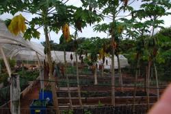Malai Manso Resort valoriza sustentabilidade com ações que buscam impacto ambiental zero
