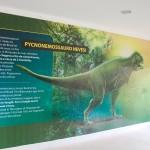 História de grandes dinos preservada em Salgadeira