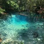 Nascente do Rio Salobra no Aquário Encantado