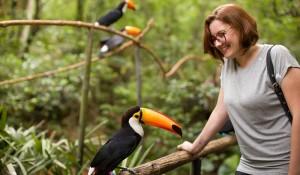 Com mais de 930 mil visitantes, Parque das Aves bate recorde de visitação anual