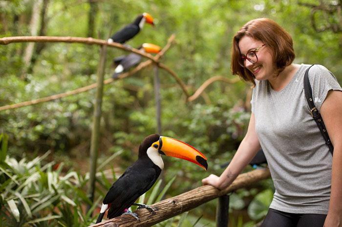 Parque das Aves registra recorde de visitação em 2019