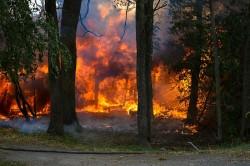 Delta doa US$ 250 mil em apoio ao combate dos incêndios na Austrália