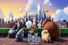"""Universal abre atração do """"Pets – A Vida Secreta dos Bichos"""" em março"""