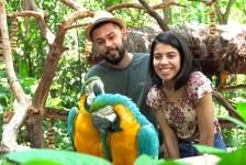 Parque das Aves espera receber mais de 22 mil visitantes durante Carnaval