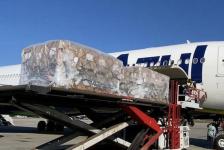 Azul, Gol, Latam e mais companhias estão autorizadas a transportar oxigênio no Brasil
