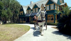 Travel South USA lança vídeo e site promocionais com foco na retomada