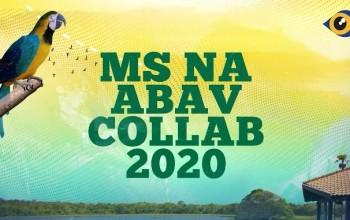 Fundtur e Sebrae-MS realizam capacitações no Abav Collab