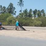 Pesca de arrastão no rio Maracaípe