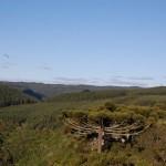 Vista geral do Parque da Ferradura
