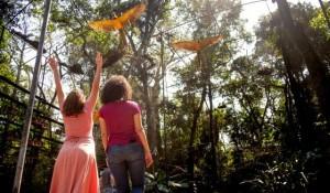 Parque das Aves recebe mais de 8 mil visitantes no Réveillon