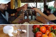 MTur seleciona roteiros para o 'Projeto Experiências do Brasil Rural'