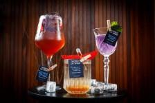 Hilton lança drinks feitos por lideranças femininas na indústria de bebidas