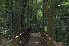 Governo prorroga prazo para estudos que vão subsidiar concessões de parques