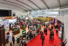 Paraíba marca presença em capacitações e rodadas de negócio da BNT Mercosul
