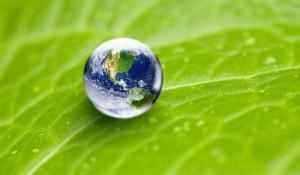 Sita será neutra em carbono até 2022