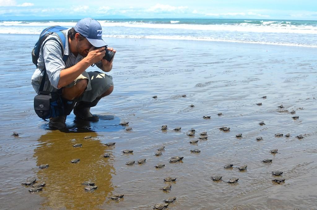Em Chocó é possível observar a desova das tartarugas