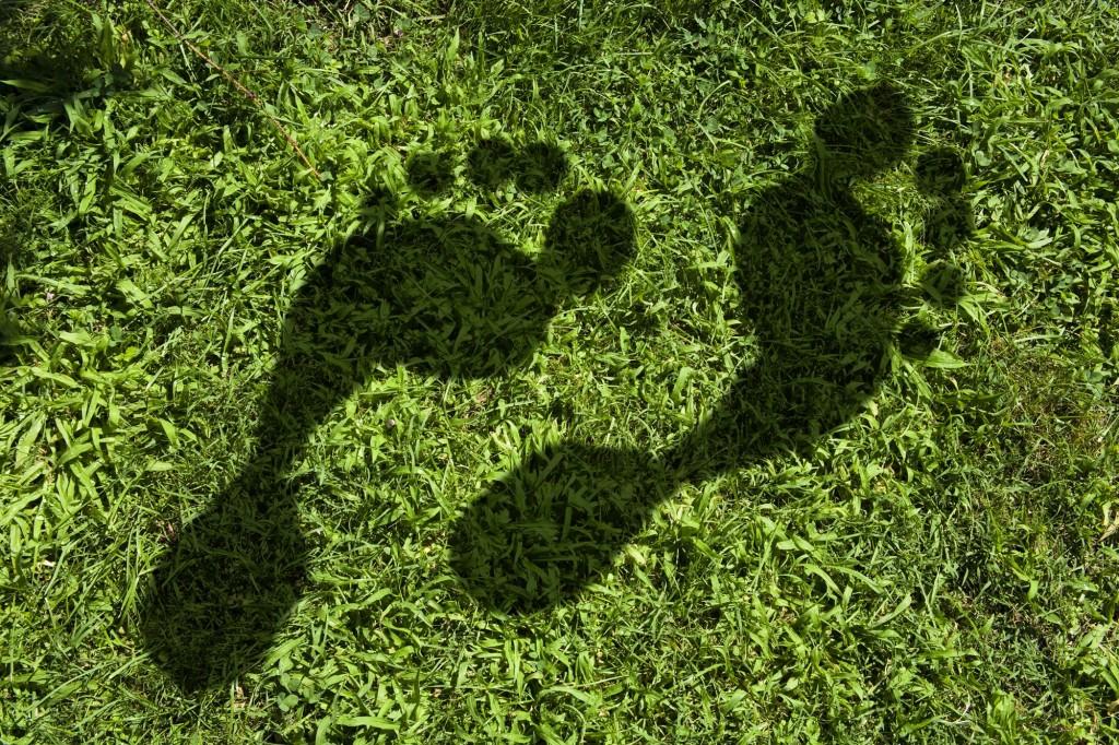 footprint-grass-2000x1333