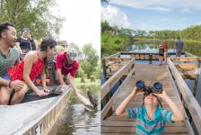 Travel South USA realiza webinar sobre atrativos naturais no sul dos EUA