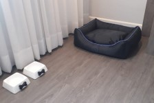 Grand Mercure Curitiba Rayon adota hospedagem free para pets